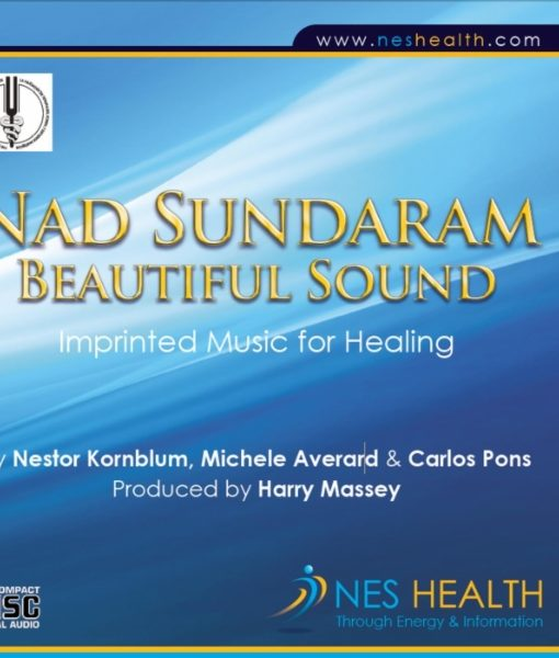 Nad Sundaram beautiful sound MP3 cover - imprinted music for healing.