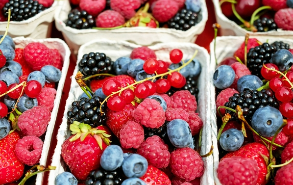 Can antioxidants harm you - bioenergetics approach leads to a better immune system and overall health.