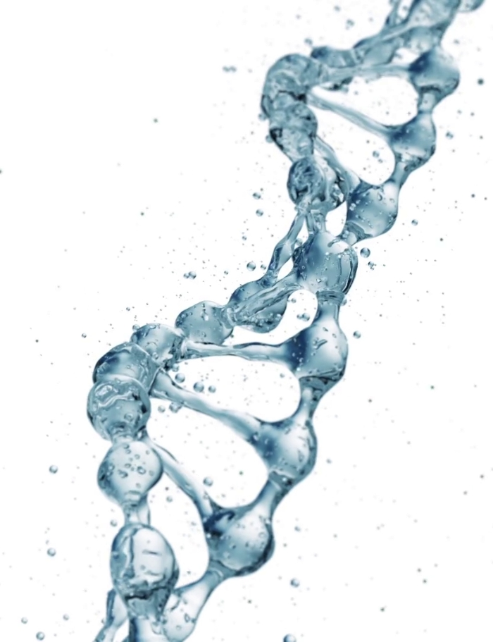 DNA water.