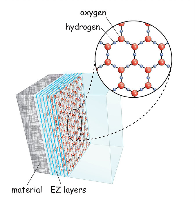 EZ water structure.