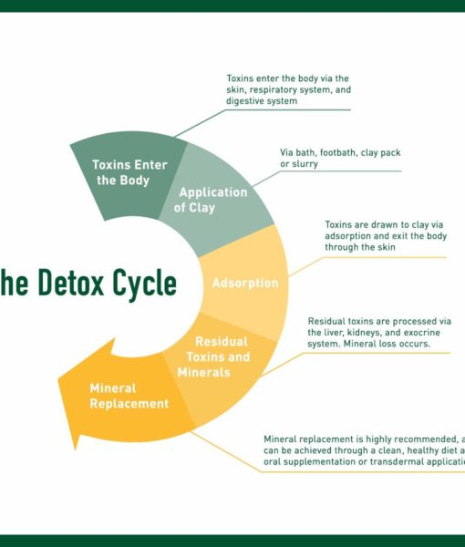 The detox cycle when using Enviromedica Magnetic Clay Bath - an effective, therapeutic and mineral-rich detoxification in the comfort of your home.