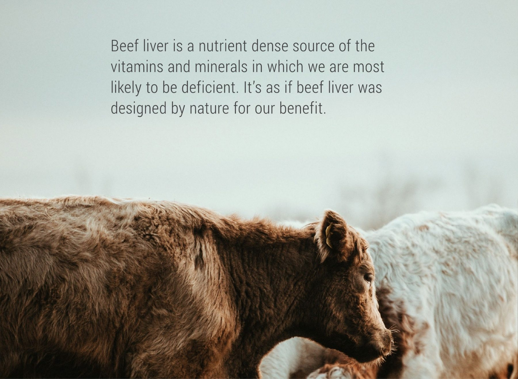 Enviromedica Pastured Cartilage Collagen provides a concentrated matrix of naturally occurring nutrients in their correct physiological ratios. This ancient nutritional powerhouse plays a fundamental role in supporting healthy joints, cartilage, and immune function.