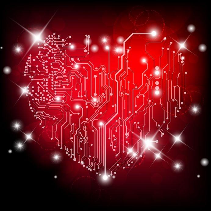 Heart health and bioenergetics.