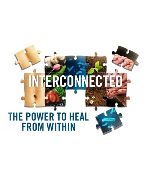 Interconnected course - the power to heal from within.