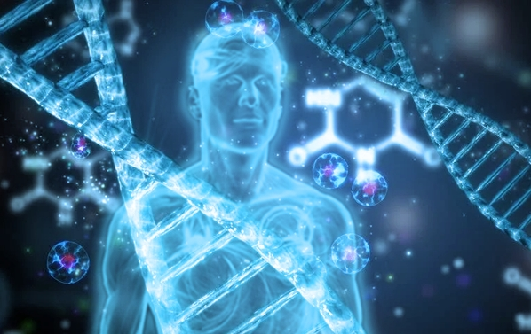 Morphic fields - the 'matrix' behind our health.