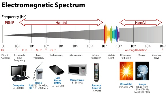 Frequency spectrum of PEMF - a non-invasive, bioenergetic therapy that brings relief from many acute and chronic issues by using bursts of a low frequency pulsed electromagnetic field that will pass painlessly and quickly through the skin and penetrate deep into tissues, muscles, bones, tendons, and even organs to recharge the cell's energy and encourage its natural repair mechanisms.