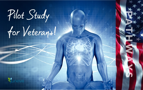 Juneva Health pilot study program for veterans to assess the efficacy of bioenergetic therapy modalities in particular with PTSD.