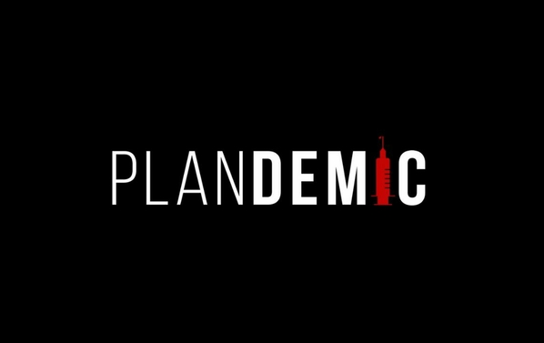 Plandemic - the hidden agenda behind COVID-19.