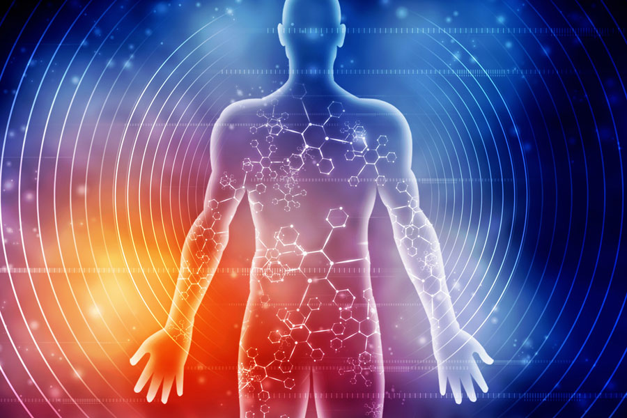 What is bioenergetics - the breakthrough hardly anyone is talking about. NES body-field scan and therapy can restore your energy and health.